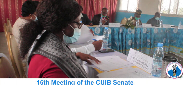 16th Meeting of the CUIB Senate for the first semester 2020/2021 school year.